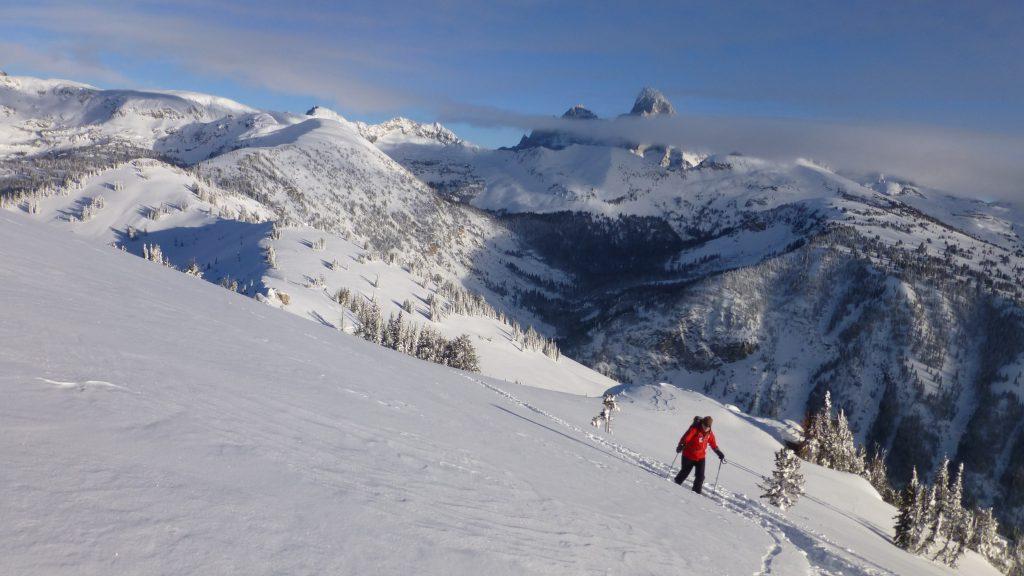 Teton Skiing