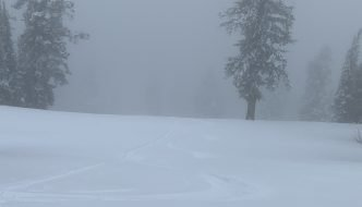 Skiing Fog at Targhee